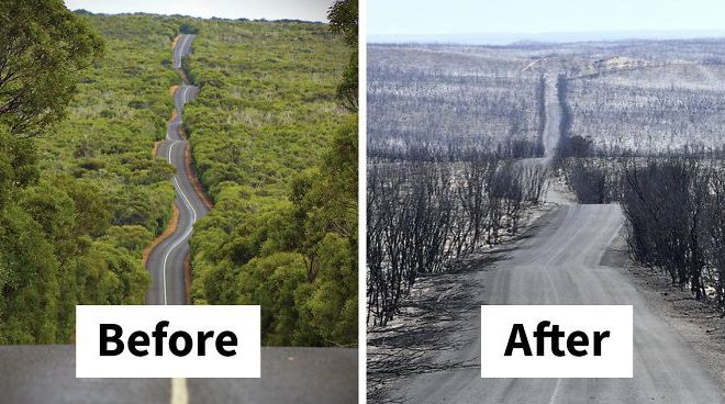 15 Then And Now Photos Of Australia Show How Much Damage The Fires Have Done