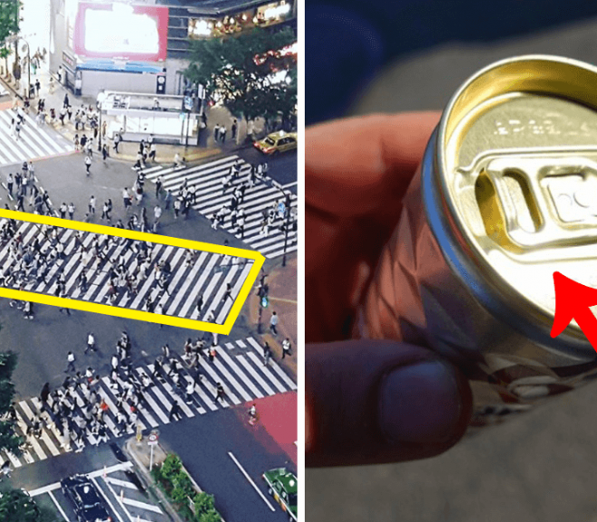 14 Genius Inventions That Exist Only in Japan